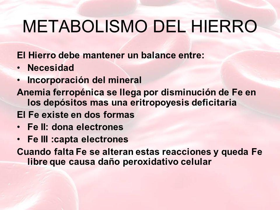 METABOLISMO DEL HIERRO El Hierro debe mantener un balance entre: Necesidad Incorporación del mineral Anemia ferropénica se llega por disminución de Fe