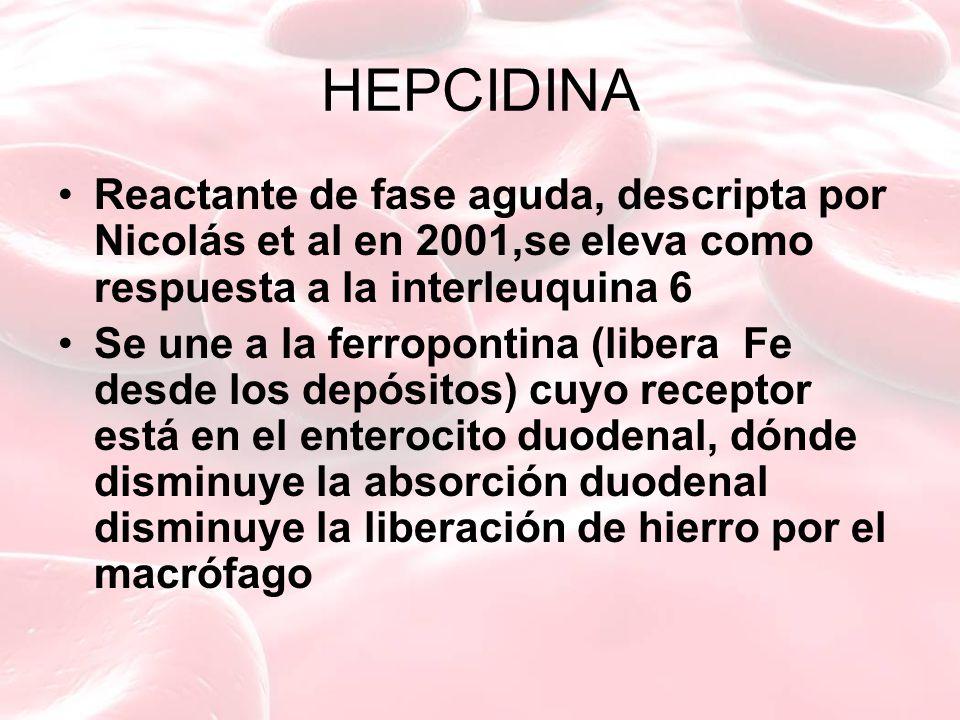 HEPCIDINA Reactante de fase aguda, descripta por Nicolás et al en 2001,se eleva como respuesta a la interleuquina 6 Se une a la ferropontina (libera Fe desde los depósitos) cuyo receptor está en el enterocito duodenal, dónde disminuye la absorción duodenal disminuye la liberación de hierro por el macrófago