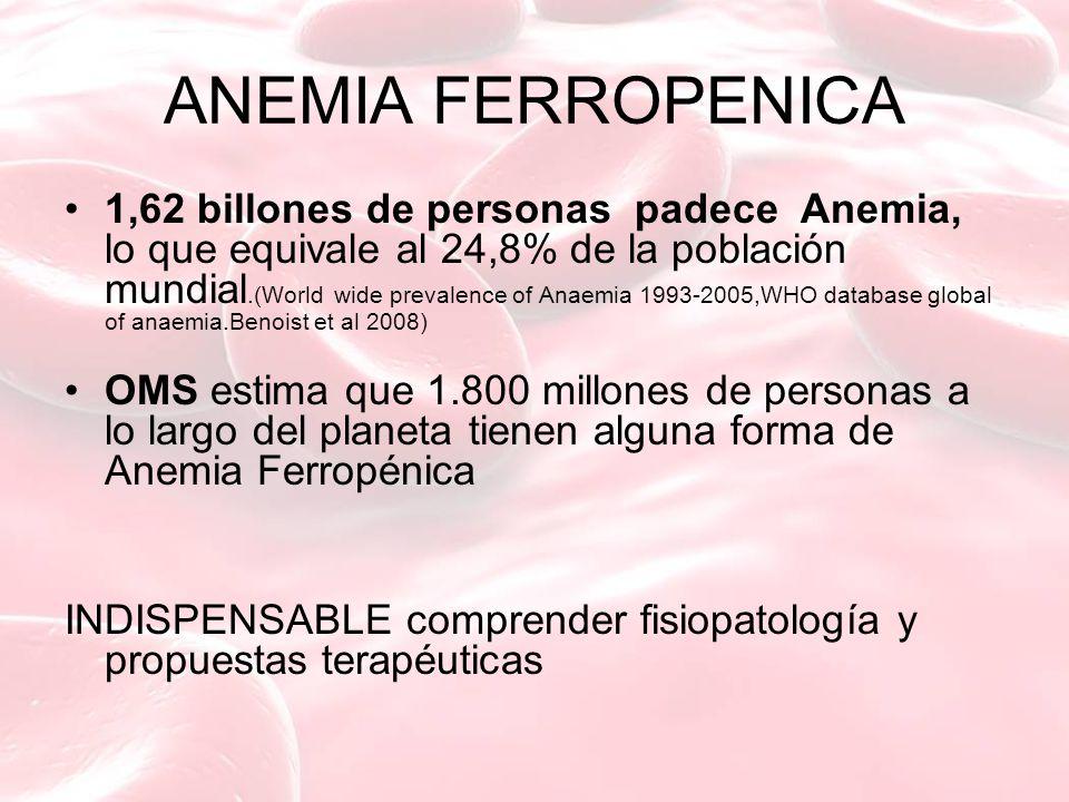 ANEMIA FERROPENICA 1,62 billones de personas padece Anemia, lo que equivale al 24,8% de la población mundial.(World wide prevalence of Anaemia 1993-2005,WHO database global of anaemia.Benoist et al 2008) OMS estima que 1.800 millones de personas a lo largo del planeta tienen alguna forma de Anemia Ferropénica INDISPENSABLE comprender fisiopatología y propuestas terapéuticas