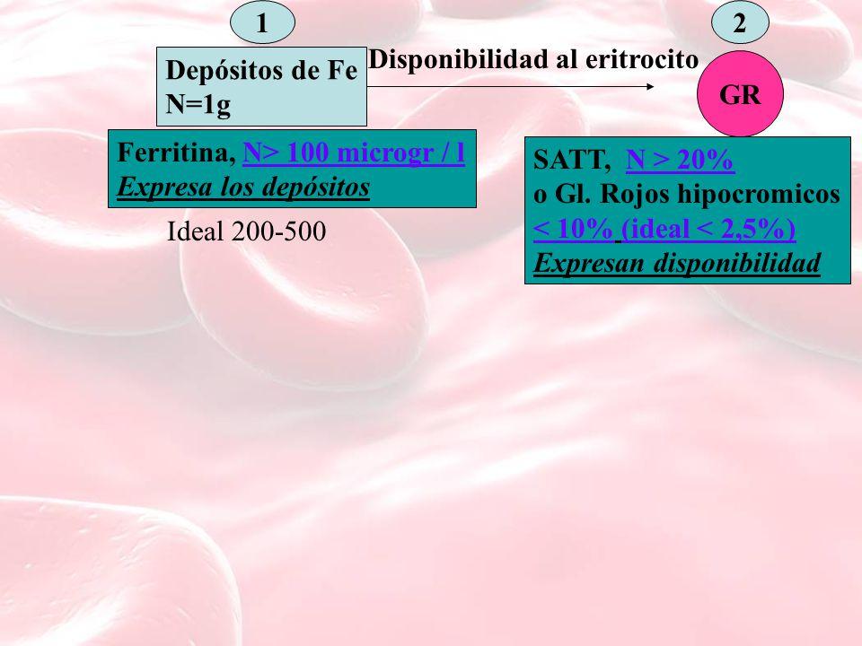 1 Depósitos de Fe N=1g 2 Disponibilidad al eritrocito GR Ferritina, N> 100 microgr / l Expresa los depósitos Ideal 200-500 SATT, N > 20% o Gl.