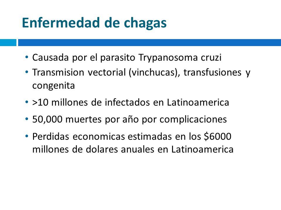 Enfermedad de chagas Causada por el parasito Trypanosoma cruzi Transmision vectorial (vinchucas), transfusiones y congenita >10 millones de infectados