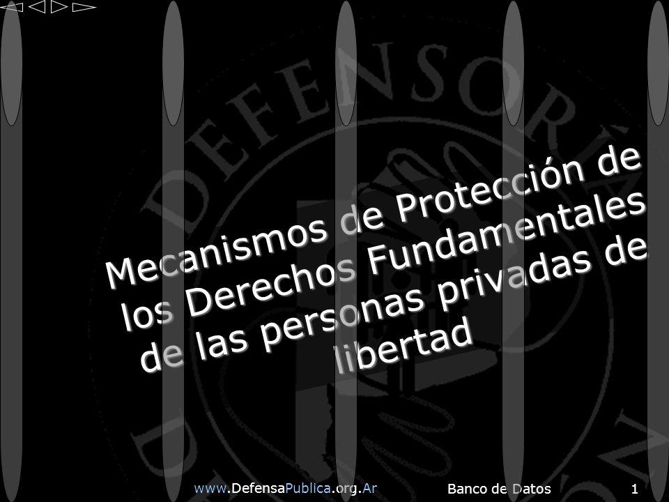 www.DefensaPublica.org.Ar Banco de Datos1 Mecanismos de Protección de los Derechos Fundamentales de las personas privadas de libertad