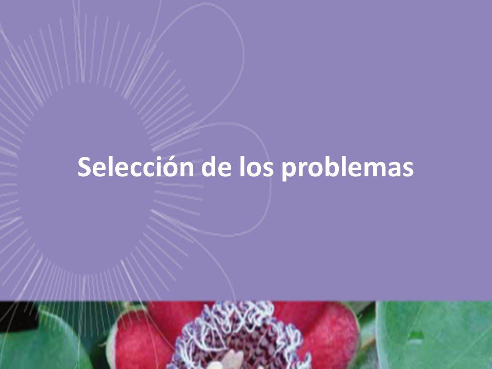Selección de los problemas