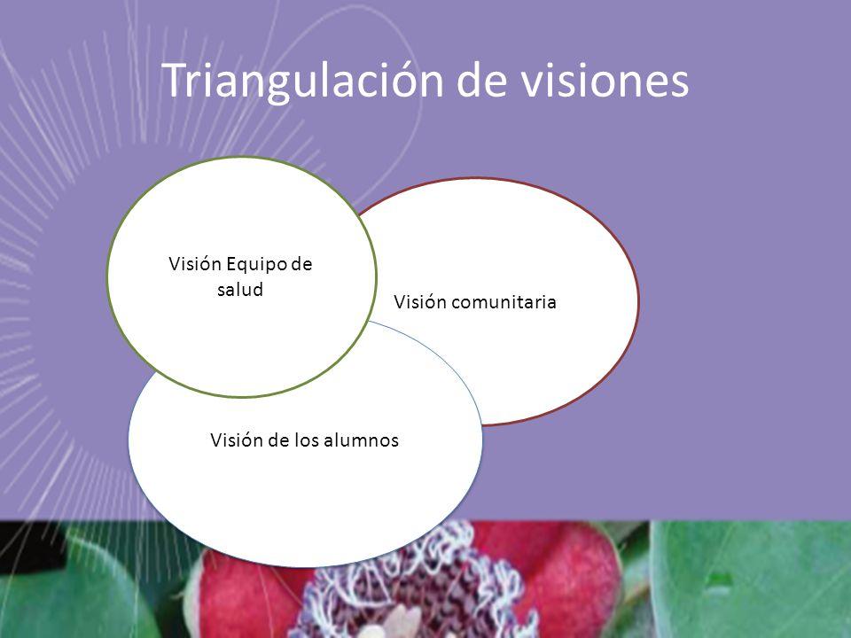 Visión comunitaria Triangulación de visiones Visión de los alumnos Visión Equipo de salud