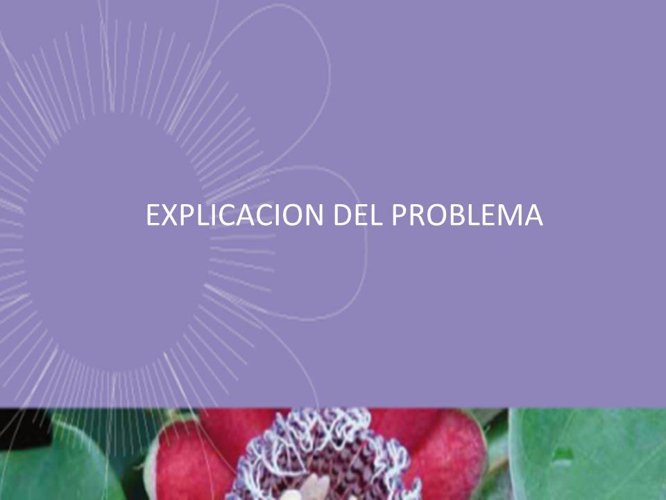 EXPLICACION DEL PROBLEMA