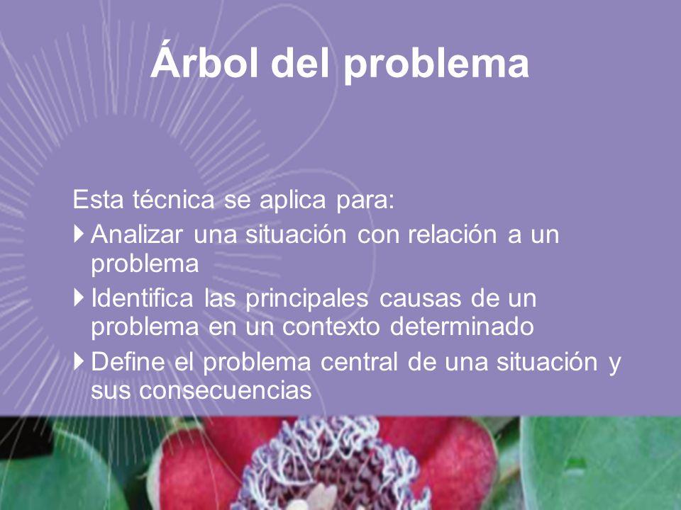 Esta técnica se aplica para: Analizar una situación con relación a un problema Identifica las principales causas de un problema en un contexto determi