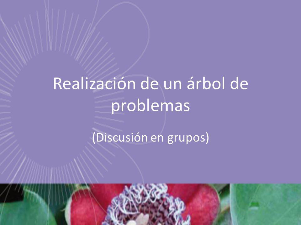 Realización de un árbol de problemas (Discusión en grupos)