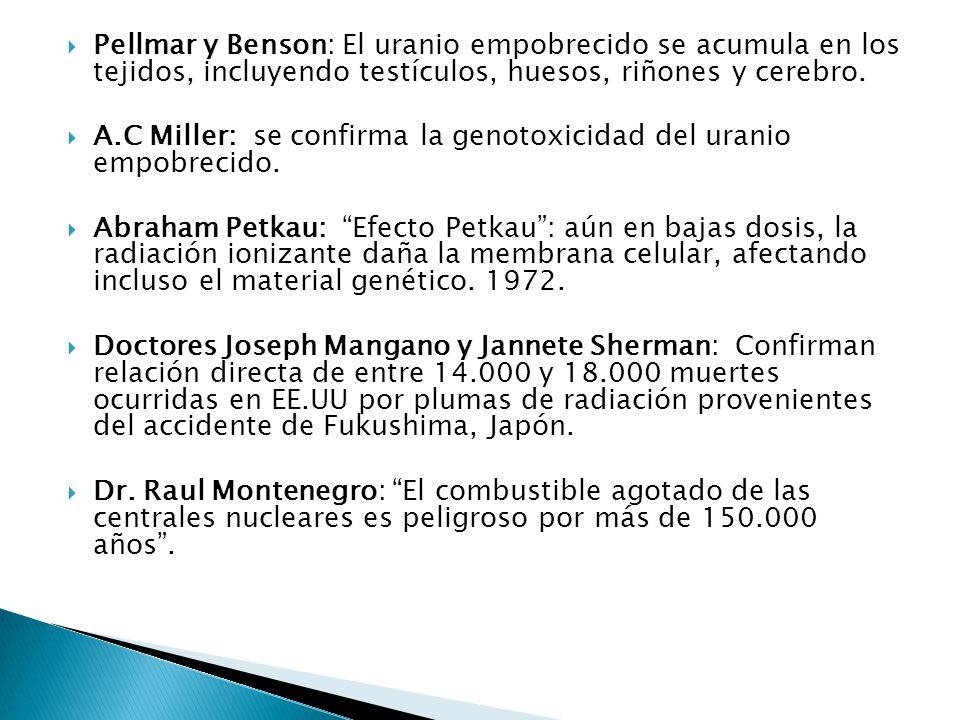 Pellmar y Benson: El uranio empobrecido se acumula en los tejidos, incluyendo testículos, huesos, riñones y cerebro.