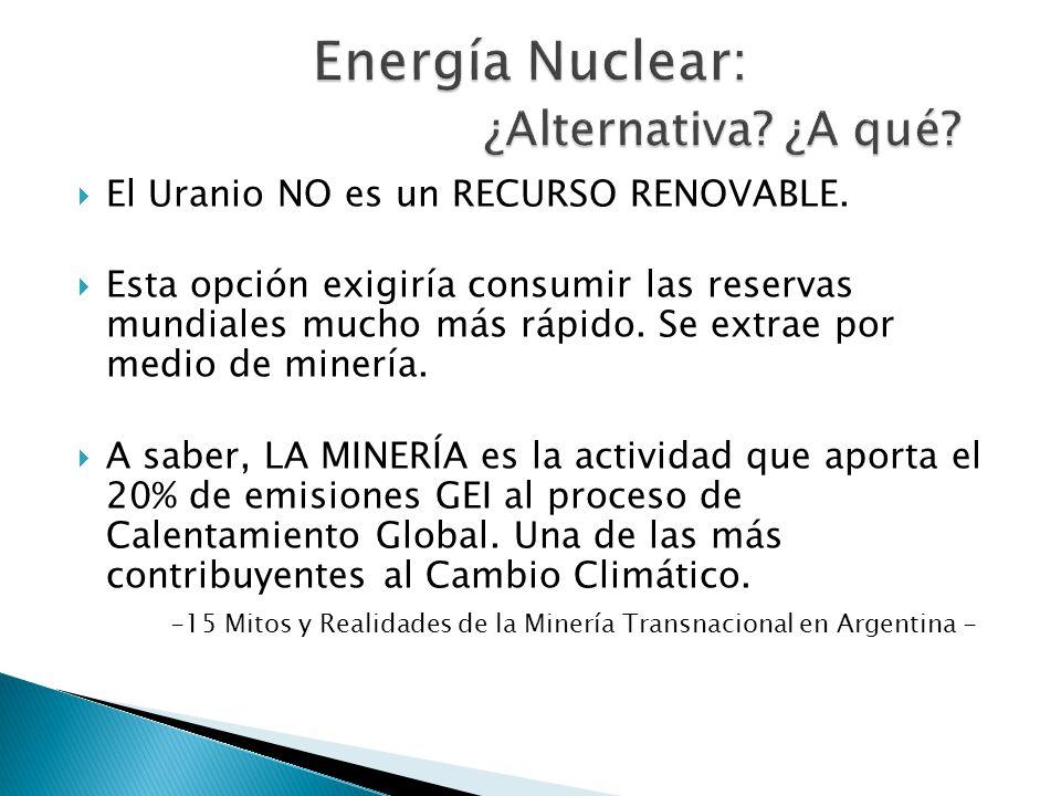 Austria y Eslovenia ratifican su política nacional antinuclear.
