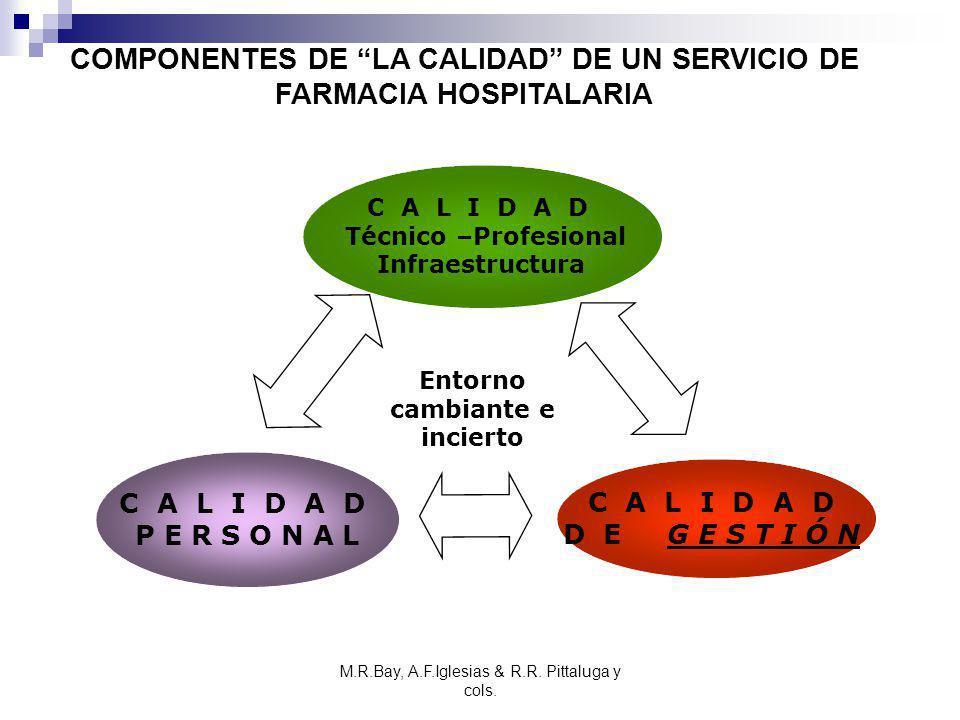 M.R.Bay, A.F.Iglesias & R.R. Pittaluga y cols. C A L I D A D Técnico –Profesional Infraestructura C A L I D A D P E R S O N A L C A L I D A D D E G E