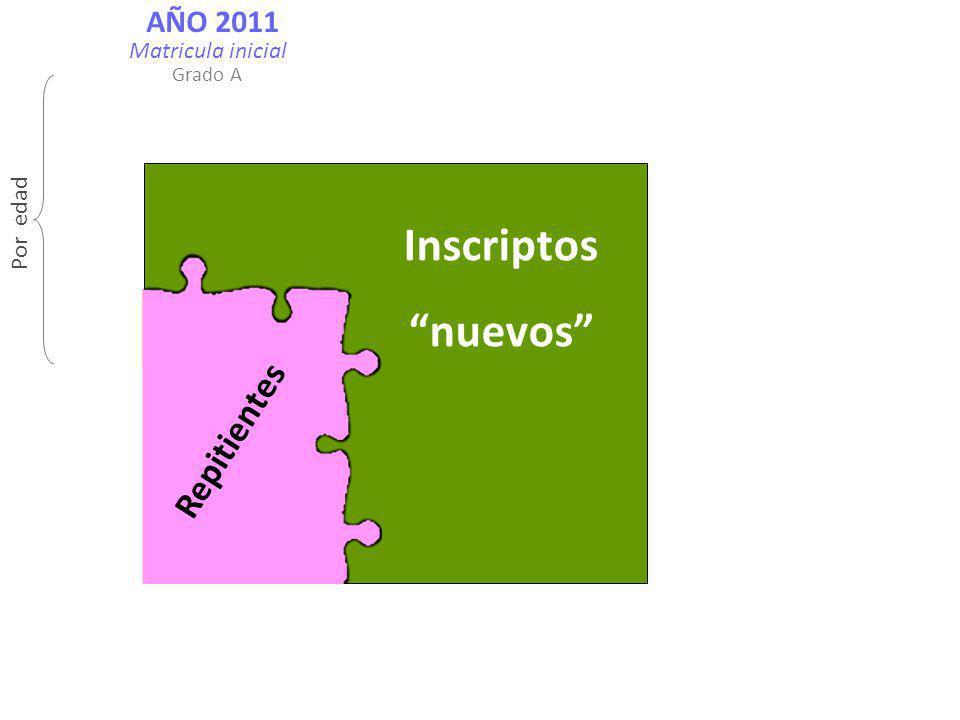 AÑO 2011 Inscriptos nuevos Repitientes Por edad Matricula inicial Grado A