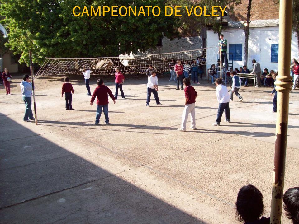 CAMPEONATO DE VOLEY