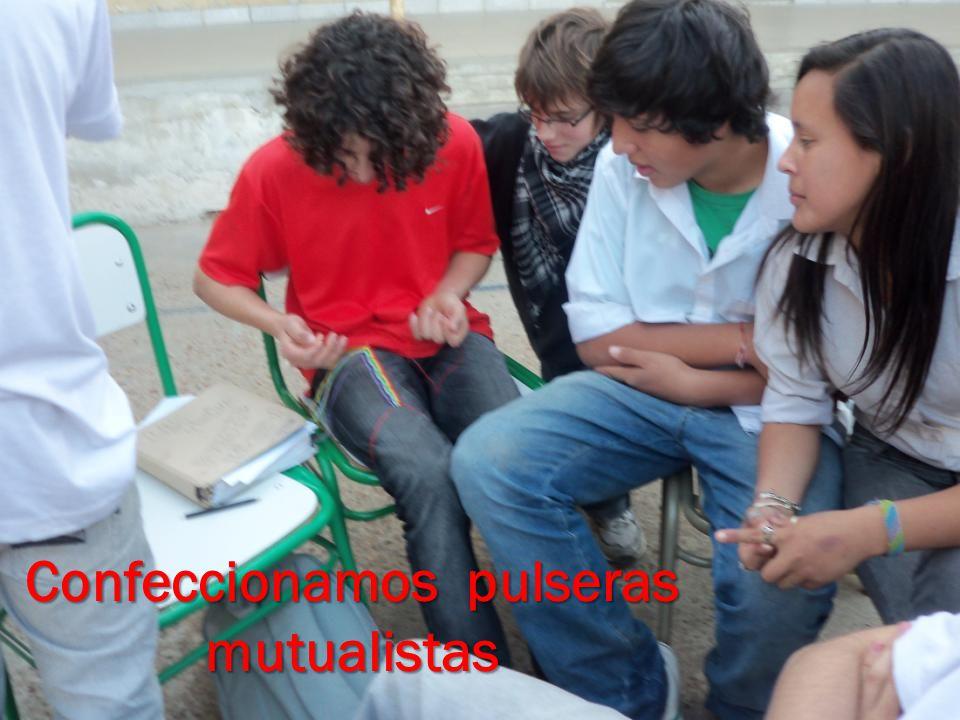 Confeccionamos pulseras mutualistas