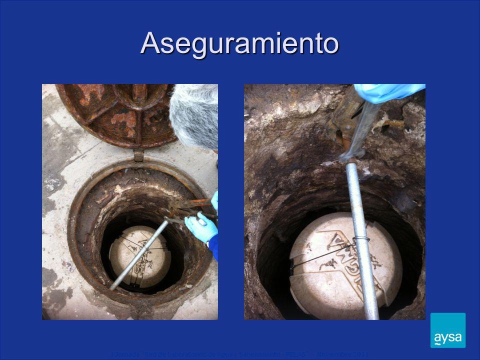 I Jornada Red de Laboratorios de Agua y Saneamiento - RELAS - Noviembre 2011 Aseguramiento