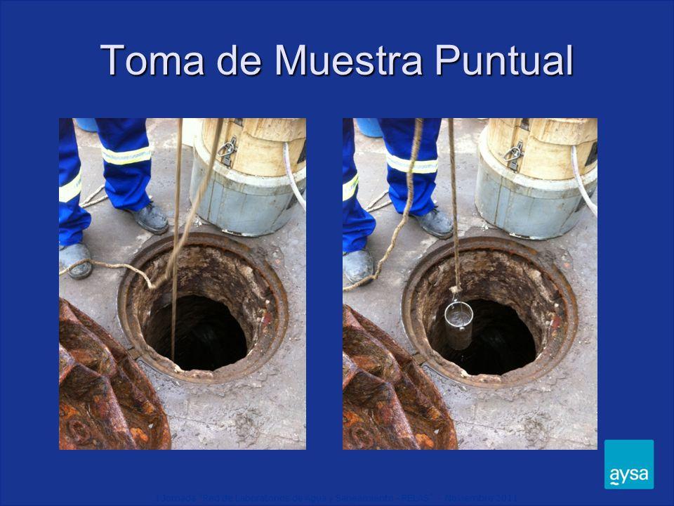 I Jornada Red de Laboratorios de Agua y Saneamiento - RELAS - Noviembre 2011 Toma de Muestra Puntual