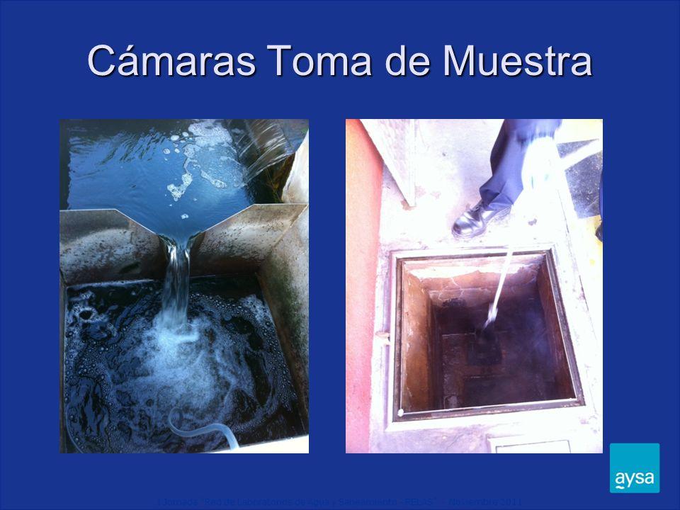 I Jornada Red de Laboratorios de Agua y Saneamiento - RELAS - Noviembre 2011 Cámaras Toma de Muestra