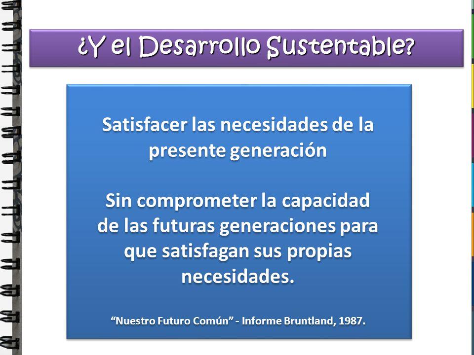 Satisfacer las necesidades de la presente generación Sin comprometer la capacidad de las futuras generaciones para que satisfagan sus propias necesida