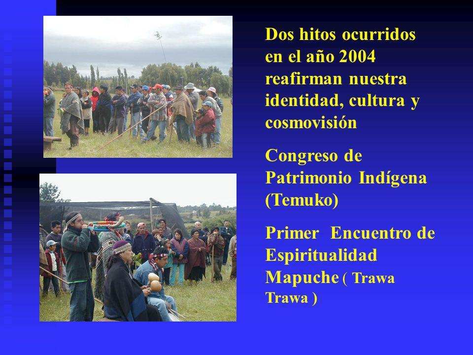Los mapuche que hemos accedido a la educación occidental, nos estamos dando a la tarea de apoyar el desarrollo de nuestras comunidades en los distinto