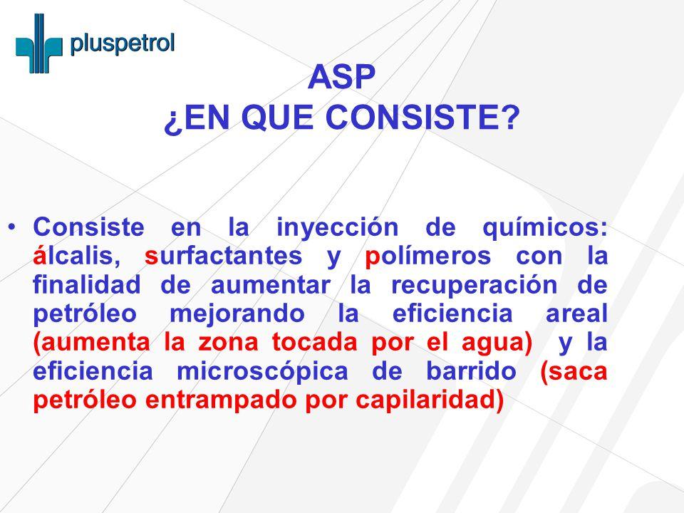 ASP ¿EN QUE CONSISTE.