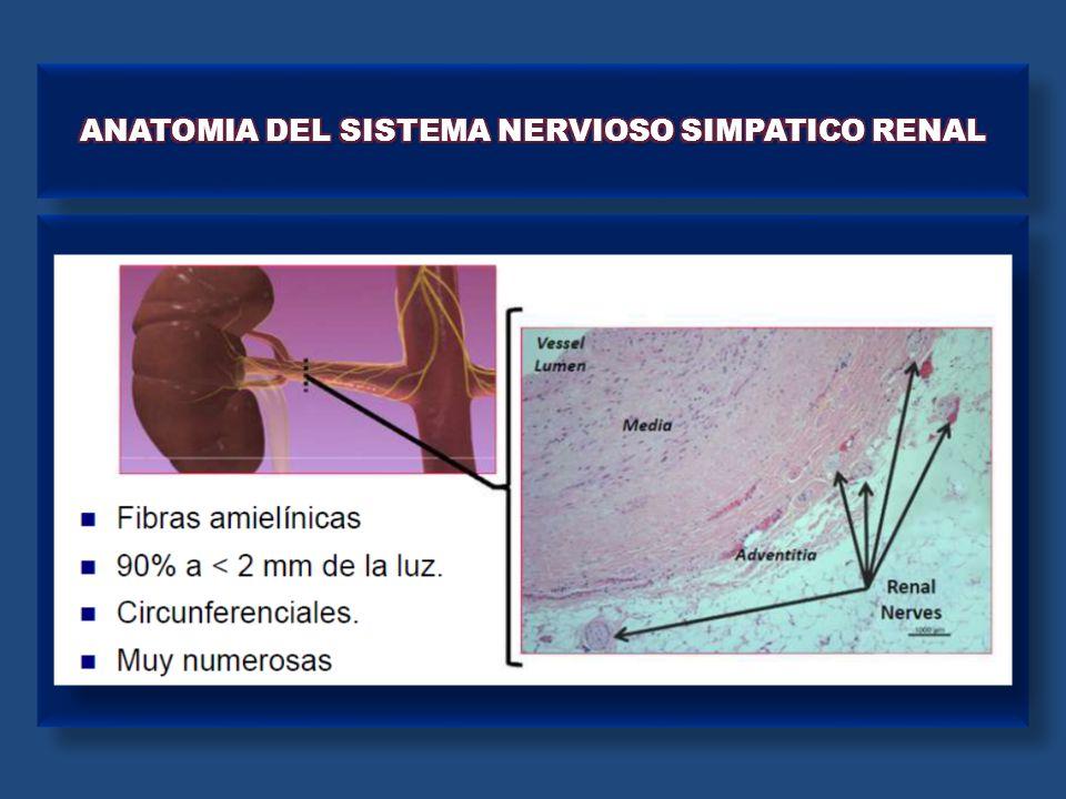ESTUDIO SIMPLICITY HTN - 2 Esler et al. Lancet 2010; 376: 1903 - 1909.
