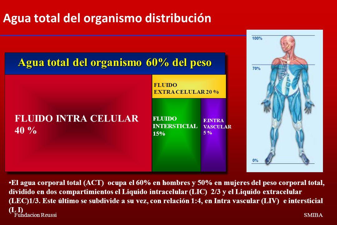 Fundacion ReussiSMIBA Agua total del organismo 60% del peso FLUIDO INTRA CELULAR 40 % FLUIDO INTERSTICIAL 15% F.INTRA VASCULAR 5 % FLUIDO EXTRA CELULAR 20 % Agua total del organismo distribución El agua corporal total (ACT) ocupa el 60% en hombres y 50% en mujeres del peso corporal total, dividido en dos compartimientos el Liquido intracelular (LIC) 2/3 y el Liquido extracelular (LEC)1/3.
