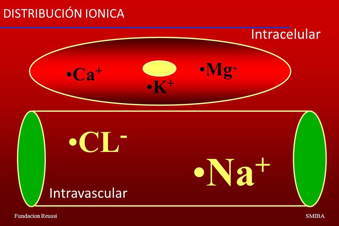 Fundacion ReussiSMIBA Ca + Mg + K + CL - Na + DISTRIBUCIÓN IONICA Intracelular Intravascular