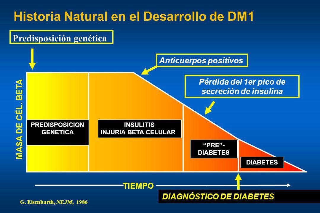Pérdida del 1er pico de secreción de insulina TIEMPO Historia Natural en el Desarrollo de DM1 MASA DE CÉL. BETA DIABETES PRE- DIABETES PREDISPOSICION