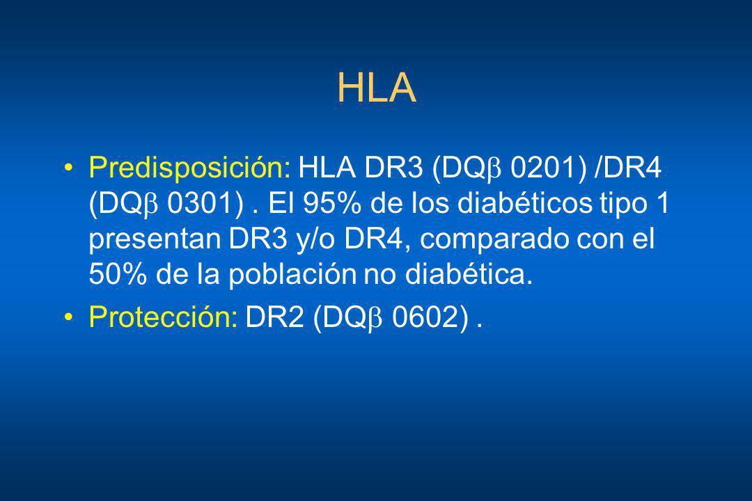 HLA Predisposición: HLA DR3 (DQ 0201) /DR4 (DQ 0301). El 95% de los diabéticos tipo 1 presentan DR3 y/o DR4, comparado con el 50% de la población no d