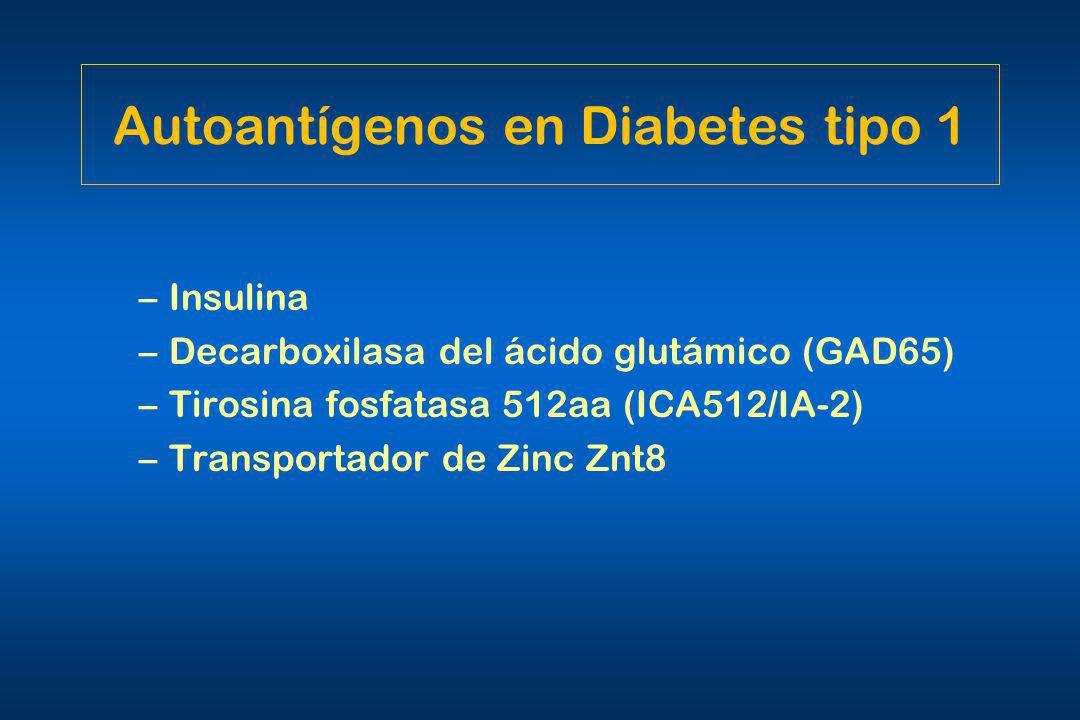 Autoantígenos en Diabetes tipo 1 –Insulina –Decarboxilasa del ácido glutámico (GAD65) –Tirosina fosfatasa 512aa (ICA512/IA-2) –Transportador de Zinc Z