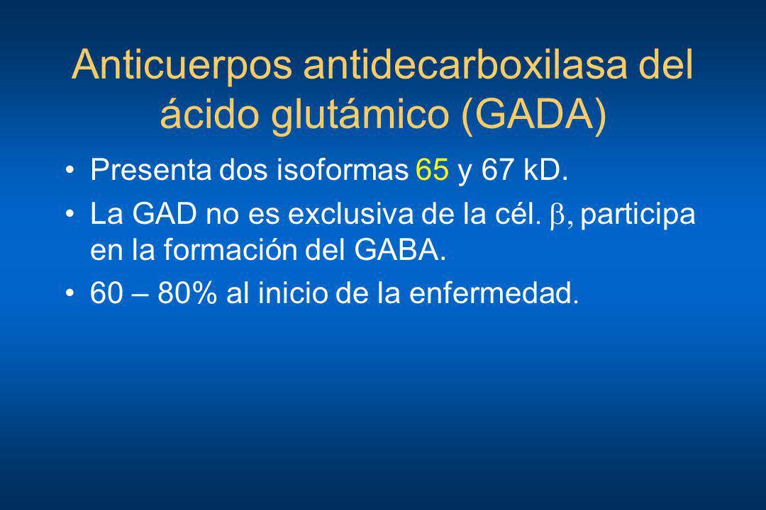 Anticuerpos antidecarboxilasa del ácido glutámico (GADA) Presenta dos isoformas 65 y 67 kD. La GAD no es exclusiva de la cél., participa en la formaci