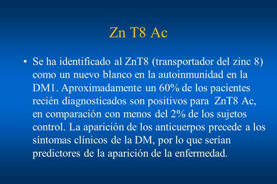 Zn T8 Ac Se ha identificado al ZnT8 (transportador del zinc 8) como un nuevo blanco en la autoinmunidad en la DM1. Aproximadamente un 60% de los pacie