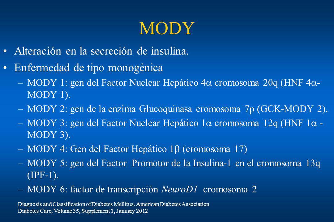 MODY Alteración en la secreción de insulina. Enfermedad de tipo monogénica –MODY 1: gen del Factor Nuclear Hepático 4 cromosoma 20q (HNF 4 - MODY 1).