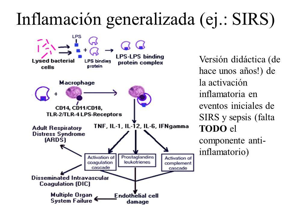 Inflamación generalizada (ej.: SIRS) Versión didáctica (de hace unos años!) de la activación inflamatoria en eventos iniciales de SIRS y sepsis (falta