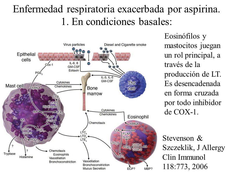 Enfermedad respiratoria exacerbada por aspirina. 1. En condiciones basales: Eosinófilos y mastocitos juegan un rol principal, a través de la producció