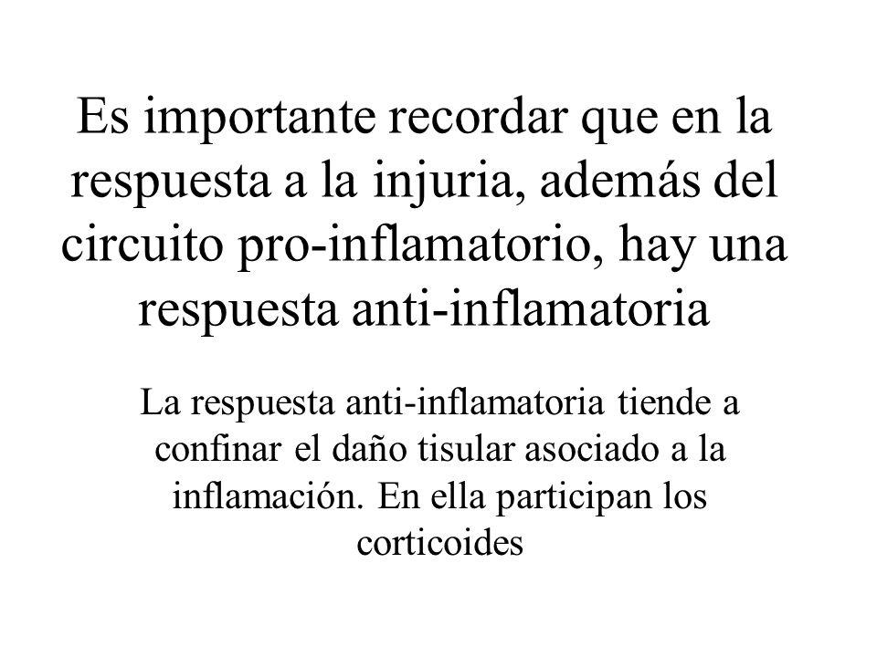 Es importante recordar que en la respuesta a la injuria, además del circuito pro-inflamatorio, hay una respuesta anti-inflamatoria La respuesta anti-i