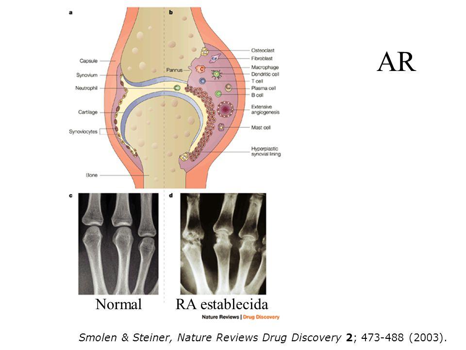AR Smolen & Steiner, Nature Reviews Drug Discovery 2; 473-488 (2003). NormalRA establecida