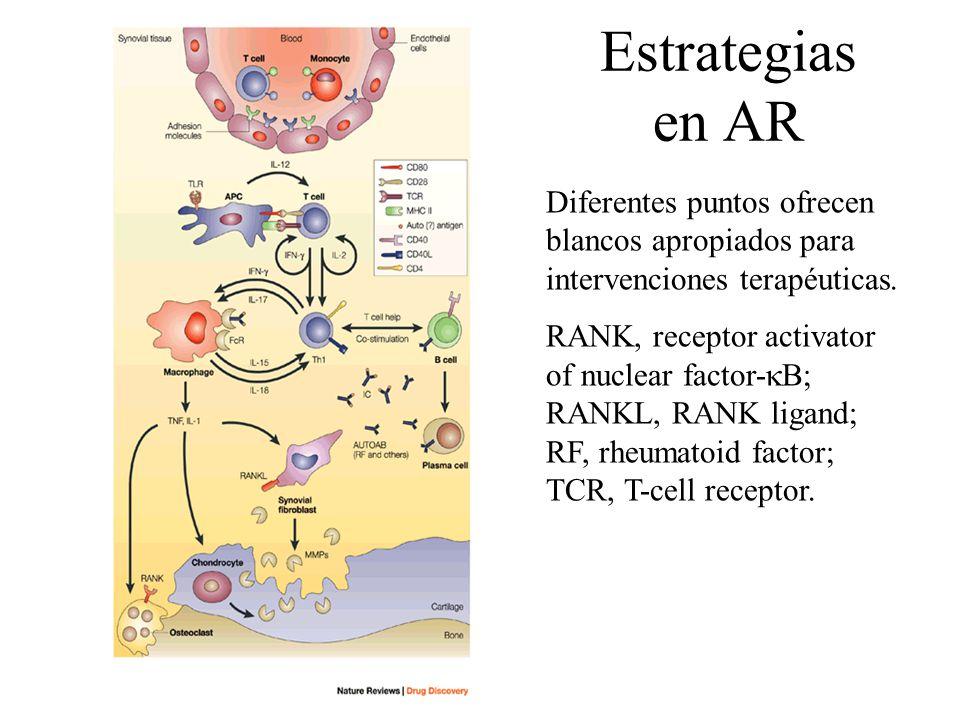 Estrategias en AR Diferentes puntos ofrecen blancos apropiados para intervenciones terapéuticas. RANK, receptor activator of nuclear factor- B; RANKL,