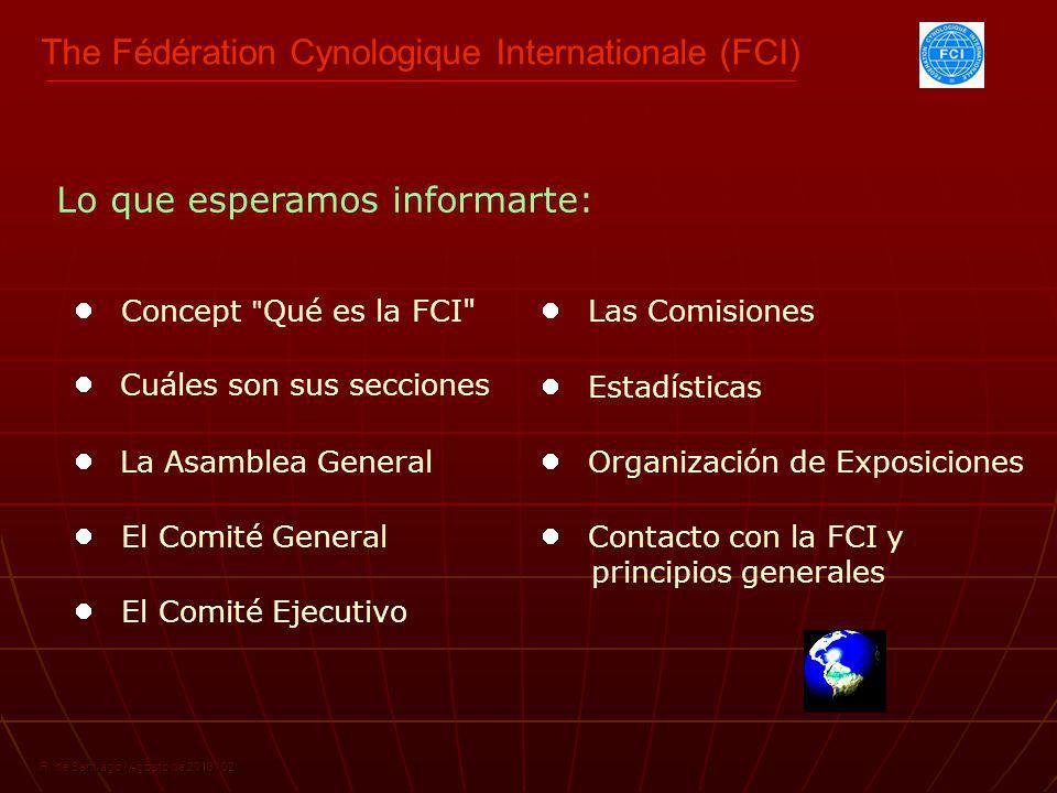 R.de Santiago / Agosto de 2013 / 03 ¿Qué es la FCI.