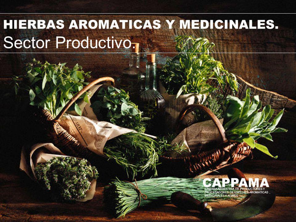 HIERBAS AROMATICAS Y MEDICINALES. Sector Productivo. CAPPAMA CAMARA ARGENTINA DE PRODUCTORES Y PROCESADORES DE ESPECIES AROMATICAS, MEDICINALES Y AFIN