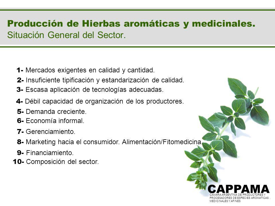 Producción de Hierbas aromáticas y medicinales. Situación General del Sector. CAPPAMA CAMARA ARGENTINA DE PRODUCTORES Y PROCESADORES DE ESPECIES AROMA