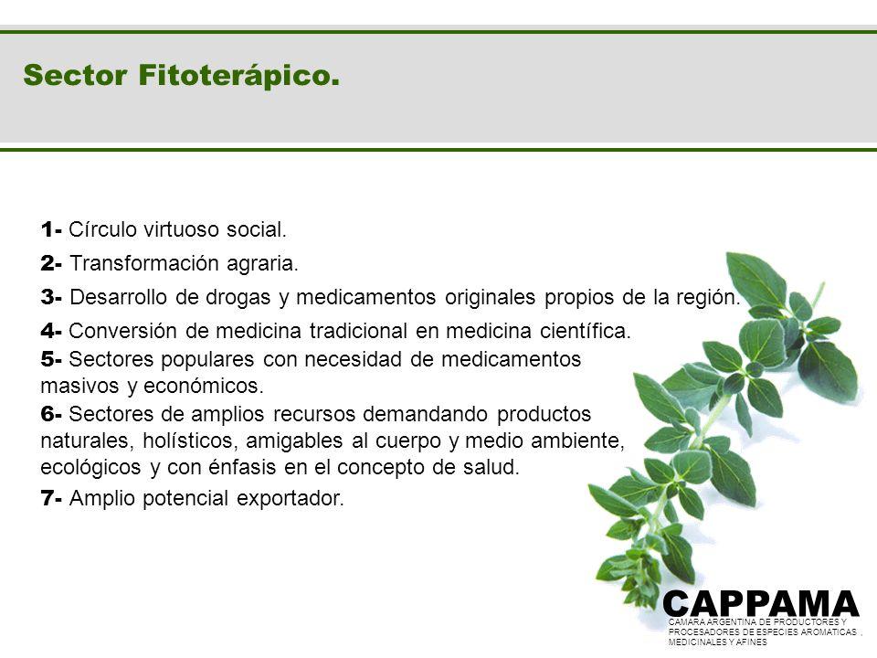 Sector Fitoterápico. CAMARA ARGENTINA DE PRODUCTORES Y PROCESADORES DE ESPECIES AROMATICAS, MEDICINALES Y AFINES CAPPAMA CAMARA ARGENTINA DE PRODUCTOR
