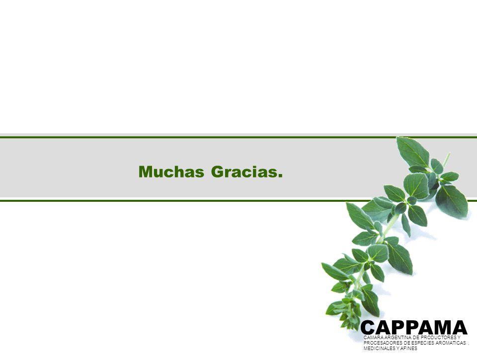 Muchas Gracias. CAPPAMA CAMARA ARGENTINA DE PRODUCTORES Y PROCESADORES DE ESPECIES AROMATICAS, MEDICINALES Y AFINES CAPPAMA CAMARA ARGENTINA DE PRODUC
