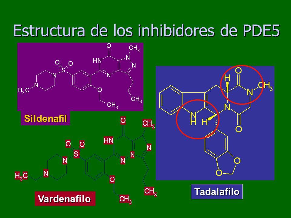 Estructura de los inhibidores de PDE5 Tadalafilo Sildenafil Vardenafilo NH N N CH 3 CH 3 O O CH 3 S N N CH 3 O O N
