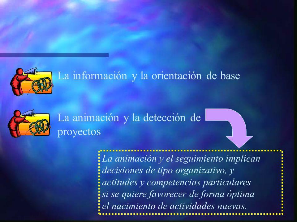 La información y la orientación de base La animación y la detección de proyectos La animación y el seguimiento implican decisiones de tipo organizativo, y actitudes y competencias particulares si se quiere favorecer de forma óptima el nacimiento de actividades nuevas.