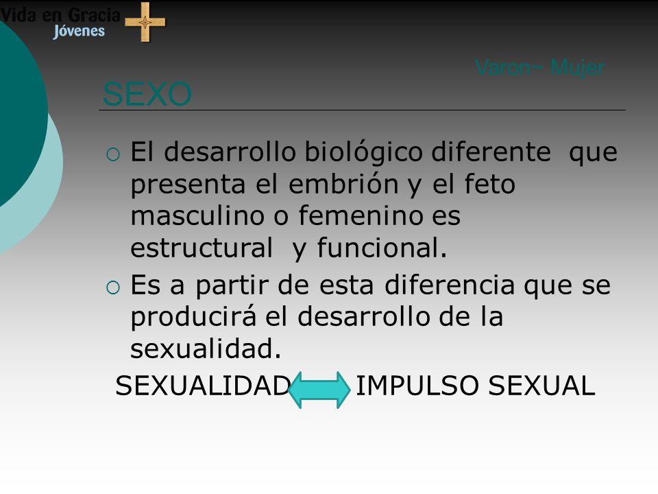 SEXO El desarrollo biológico diferente que presenta el embrión y el feto masculino o femenino es estructural y funcional.