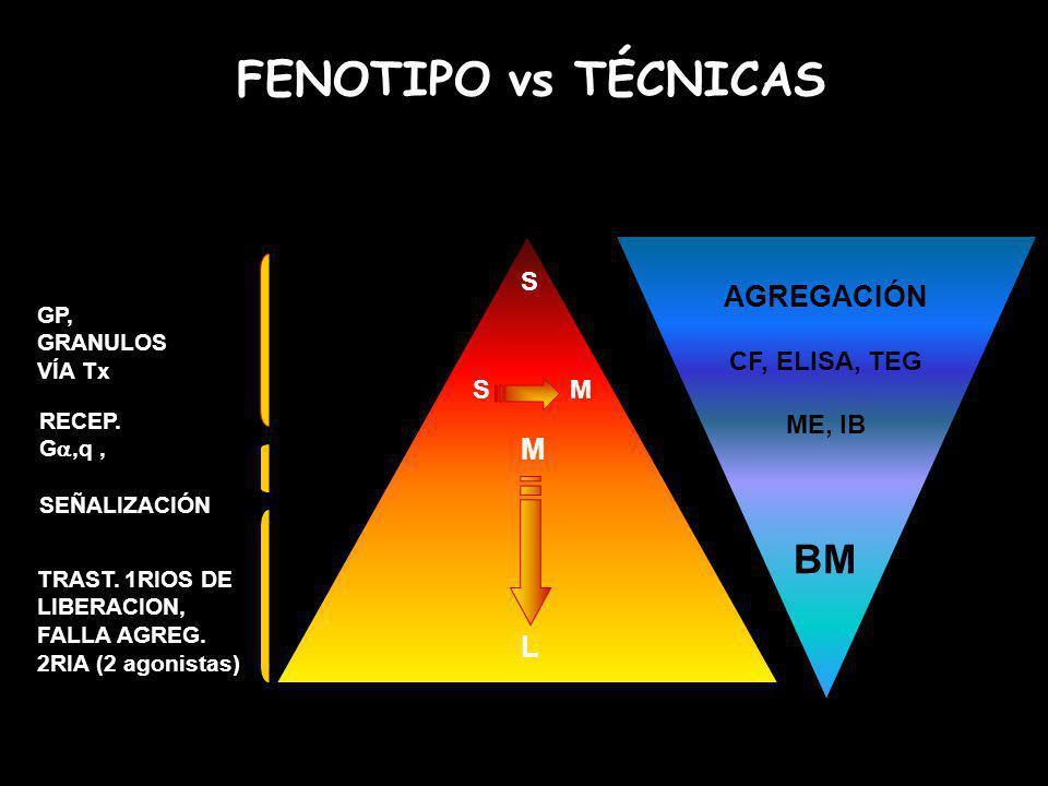 FENOTIPO vs TÉCNICAS S S M M L AGREGACIÓN CF, ELISA, TEG ME, IB BM GP, GRANULOS VÍA Tx RECEP. G,q, SEÑALIZACIÓN TRAST. 1RIOS DE LIBERACION, FALLA AGRE