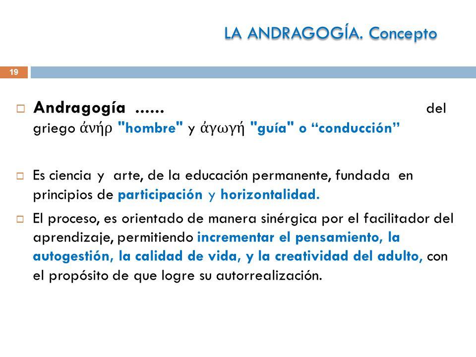 19 Andragogía......