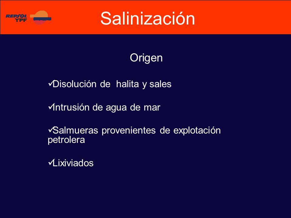 Origen Disolución de halita y sales Intrusión de agua de mar Salmueras provenientes de explotación petrolera Lixiviados Salinización
