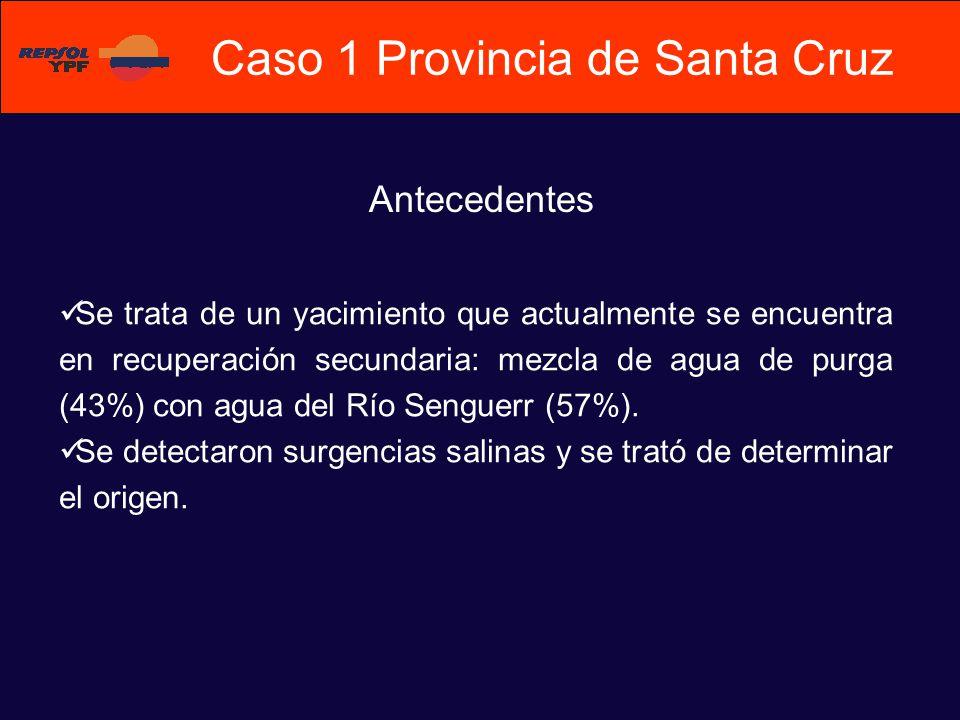 Se trata de un yacimiento que actualmente se encuentra en recuperación secundaria: mezcla de agua de purga (43%) con agua del Río Senguerr (57%). Se d