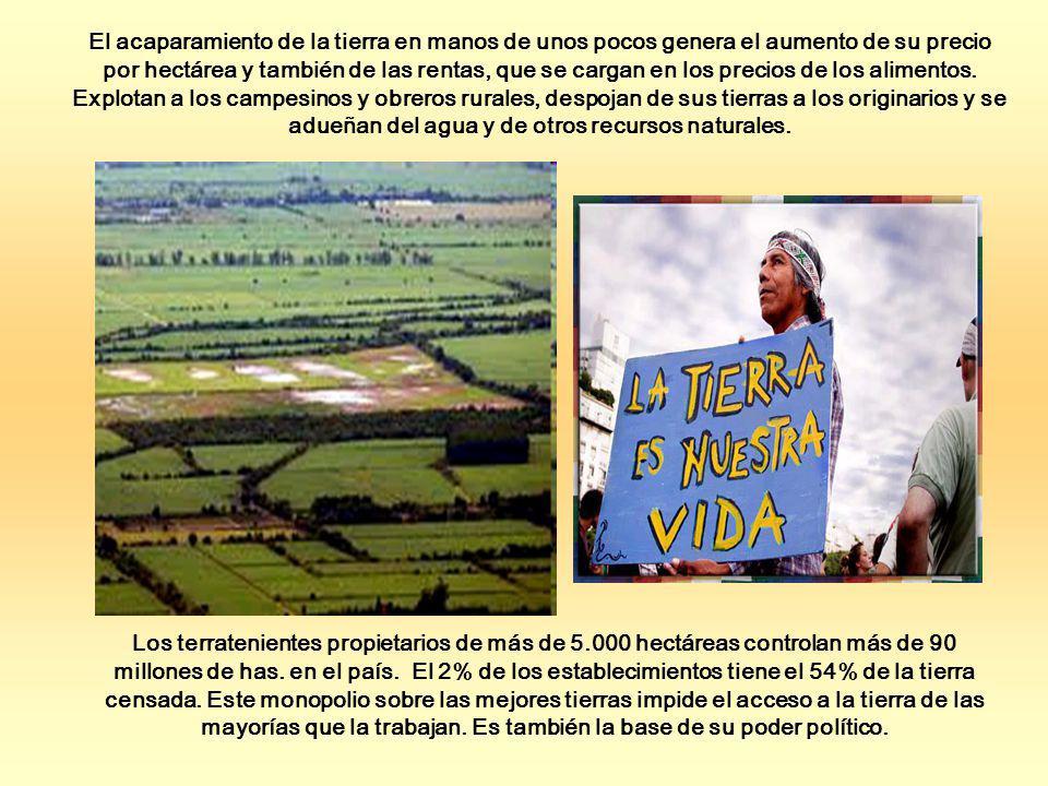 Los terratenientes propietarios de más de 5.000 hectáreas controlan más de 90 millones de has. en el país. El 2% de los establecimientos tiene el 54%